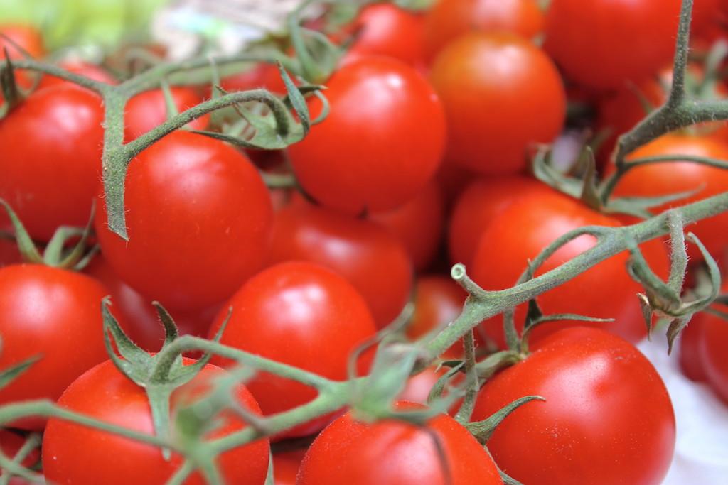 bio-essen-tomaten
