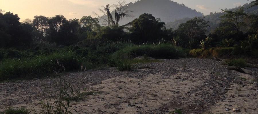 Das Paradies in Thailand: Khao Sok