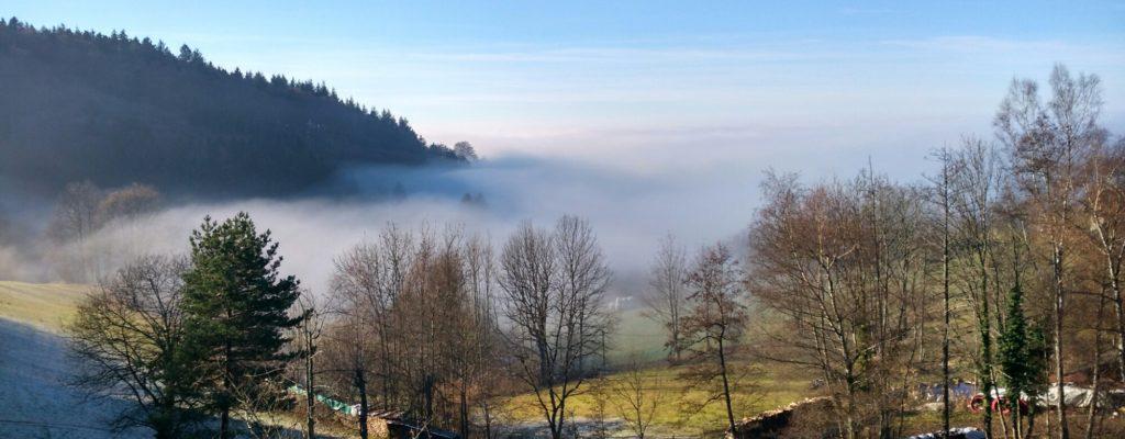 Nebelschwaden in Sasbachwalden, Schwarzwald